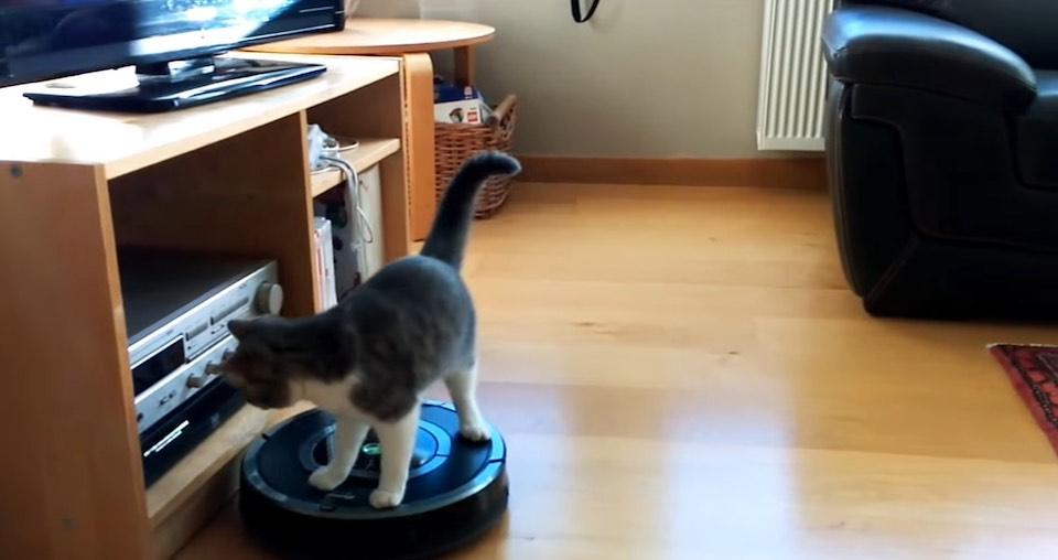 Première utilisation de mon aspirateur Roomba